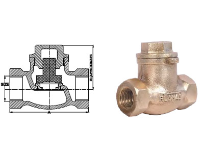 Steam Non-Return Valve